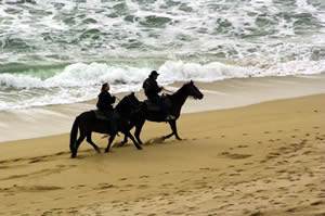 horseback riding on the monterey bay